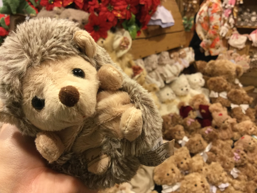 Teddy Bear Hedge.JPG