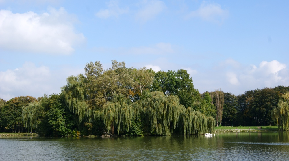 Nowa_Huta_Lake,island,Nowa_Huta,Krakow,Poland.JPG